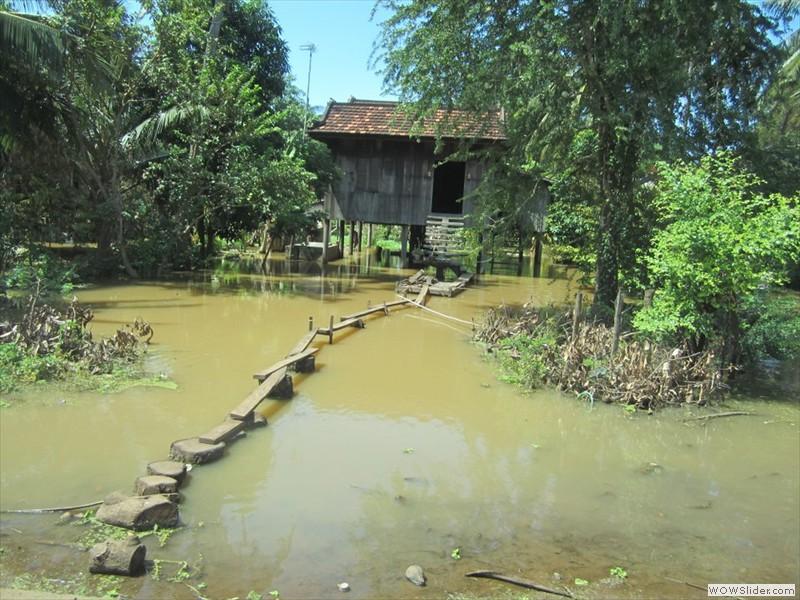mekong river floodplain - Cambodia